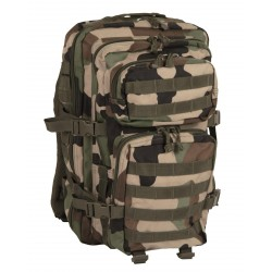 Backbag 40 L Central Europe