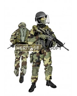 French Airborne Marines